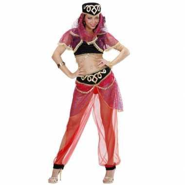 1001 nacht danseres kostuum