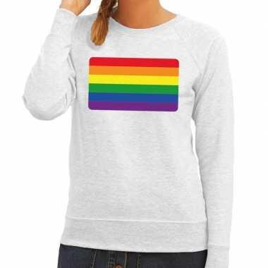 Gay pride regenboog vlag sweater grijs dames