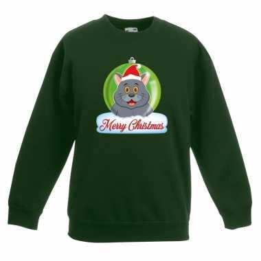 Kersttrui grijze kat / poes kerstbal groen voor jongens en meisjes