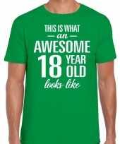 Awesome 18 year verjaardag cadeau t-shirt groen voor heren