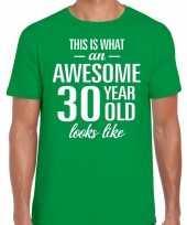 Awesome 30 year verjaardag cadeau t-shirt groen voor heren