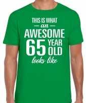 Awesome 65 year verjaardag cadeau t-shirt groen voor heren