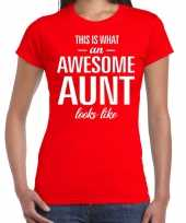 Awesome aunt cadeau t-shirt rood voor dames