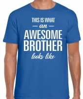 Awesome brother fun t-shirt blauw voor heren