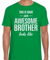 Awesome brother fun t-shirt groen voor heren