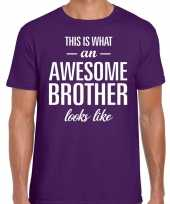 Awesome brother fun t-shirt paars voor heren