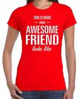 Awesome friend kado t-shirt rood voor dames