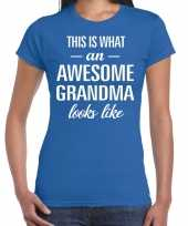 Awesome grandma cadeau t-shirt blauw voor dames