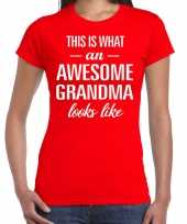 Awesome grandma cadeau t-shirt rood voor dames