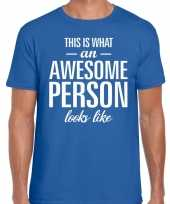 Awesome person fun t-shirt blauw voor heren