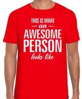 Awesome person fun t-shirt rood voor heren