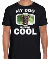 Honden liefhebber shirt mechelse herder my dog is serious cool zwart voor heren