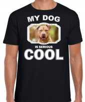 Honden liefhebber shirt staffordshire bull terrier my dog is serious cool zwart voor heren